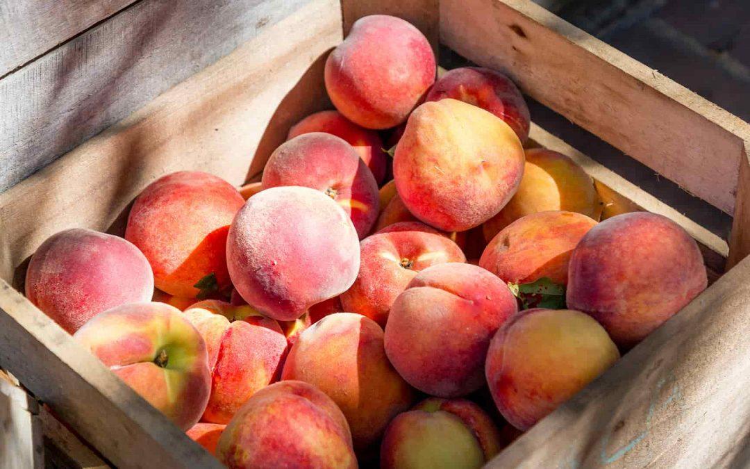 Delaware Peach Crisp