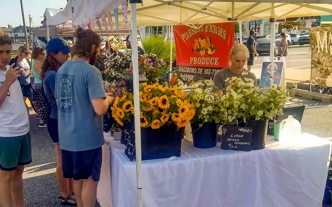 Sunflowers at the Bethany Beach Market