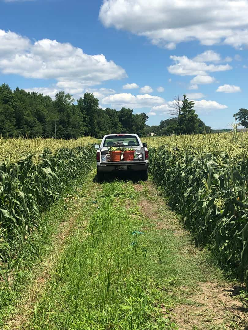 Wimbrow Farm Tour Truck in field