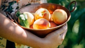 Woman Holding Bowl with Peaches